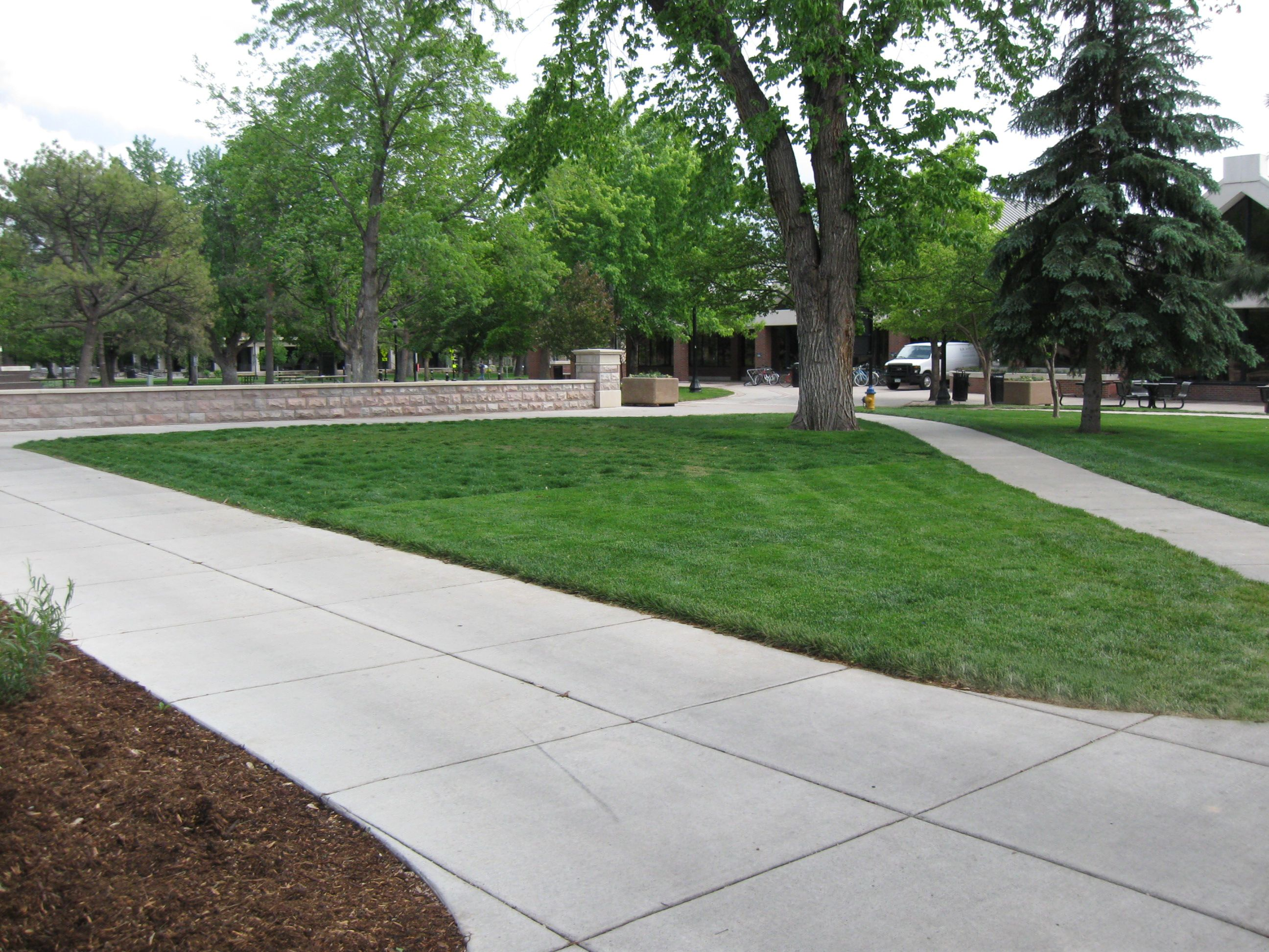 Grasscrete - Colorado College - 05