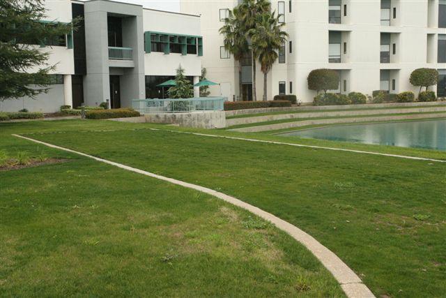Grasscrete - Clovis Community Hospital