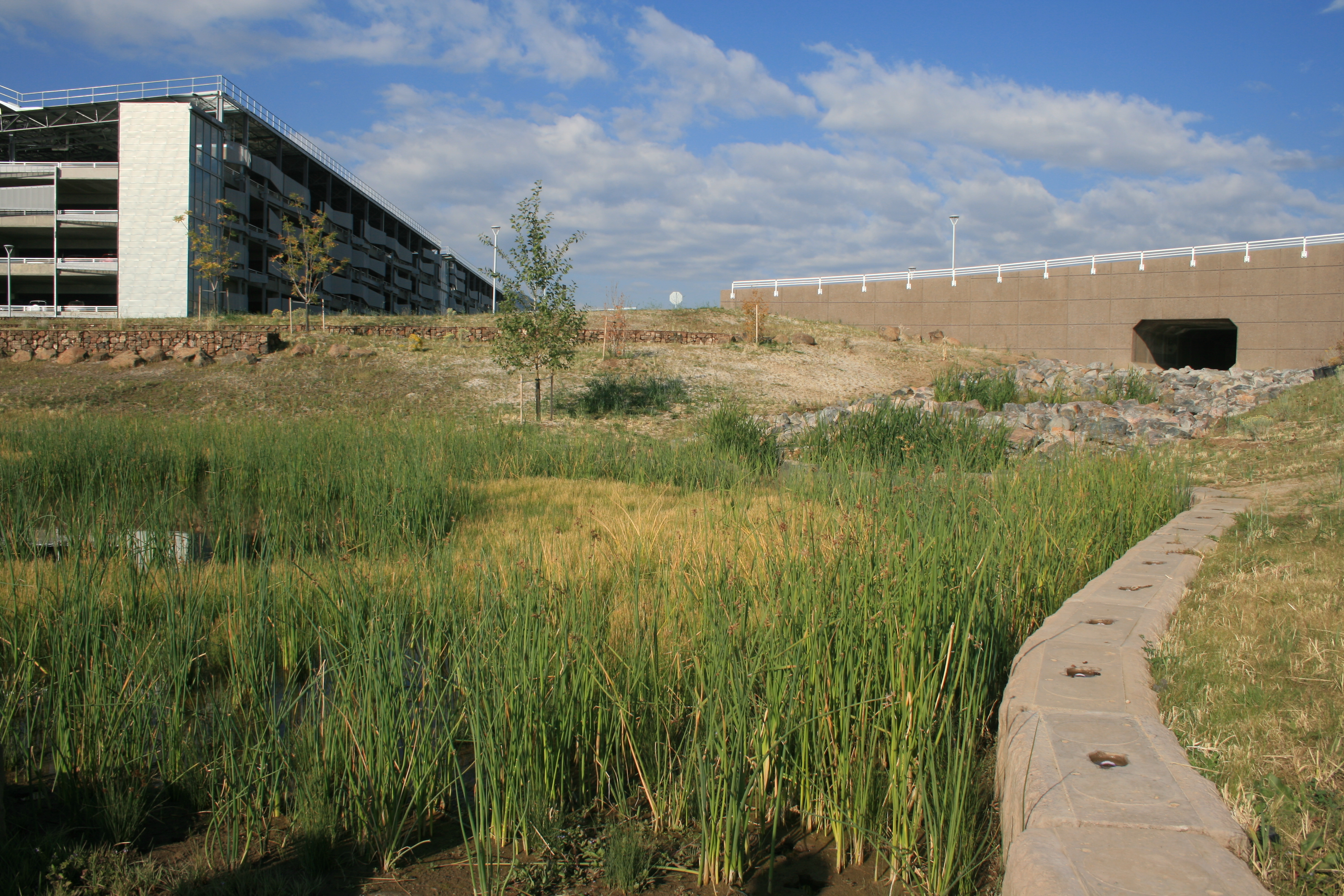 Grasscrete - NREL Detention Pond - 02