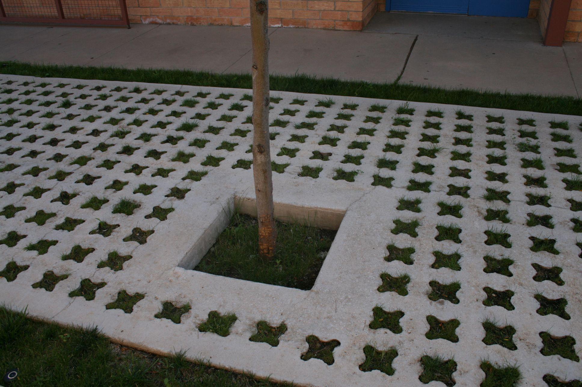 Grasscrete - St. Mikes School - 02