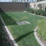 Pervious Concrete with Grass
