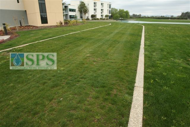 This beautiful grass area actually conceals a Grasscrete emergency access road that was recommended by the local fire department to get fire trucks close to an area that is difficult to reach and is the perfect complement the adjacent building and adjoining landscaping.