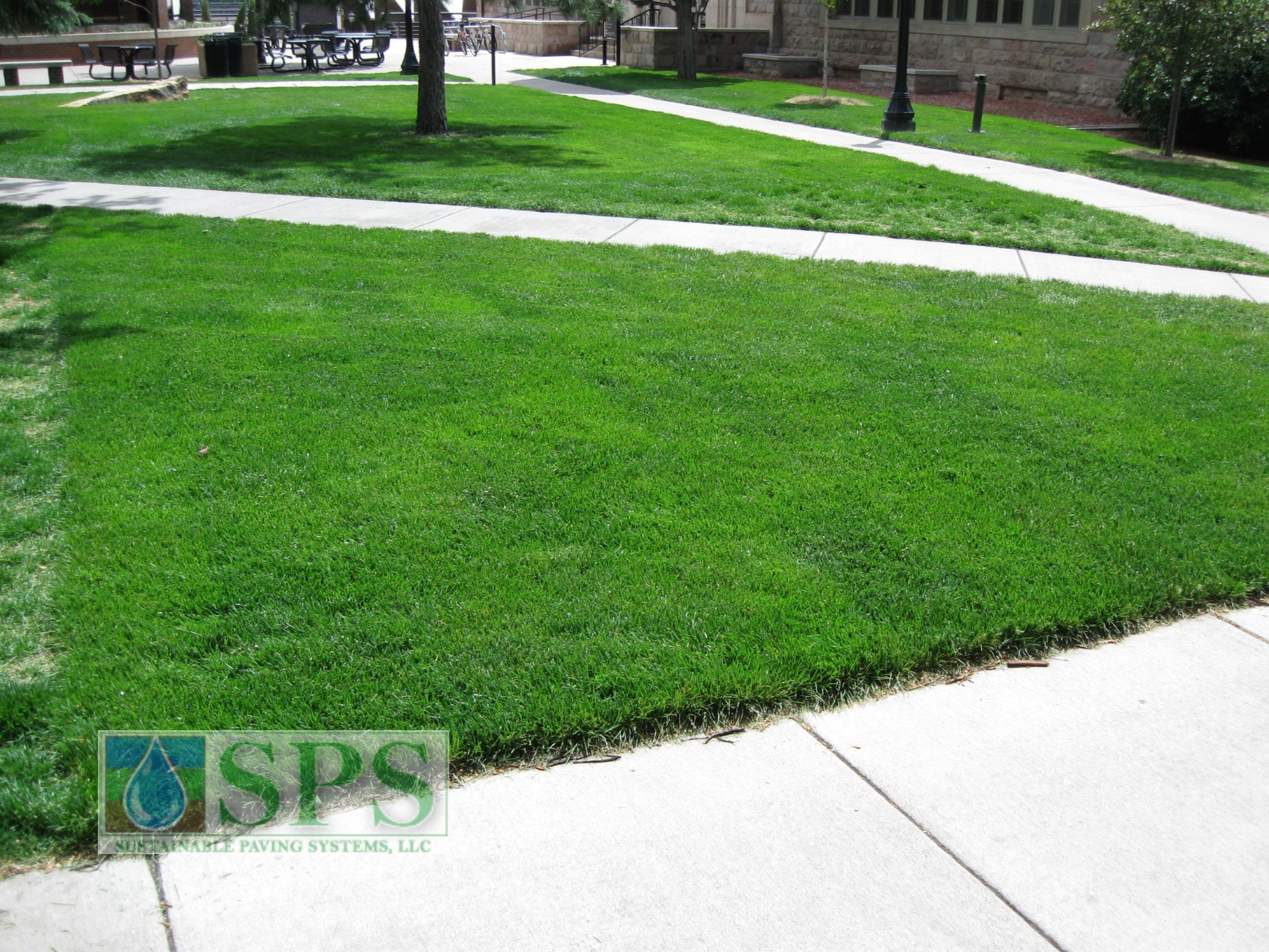 Grasscrete Concealed System At Colorado College_01