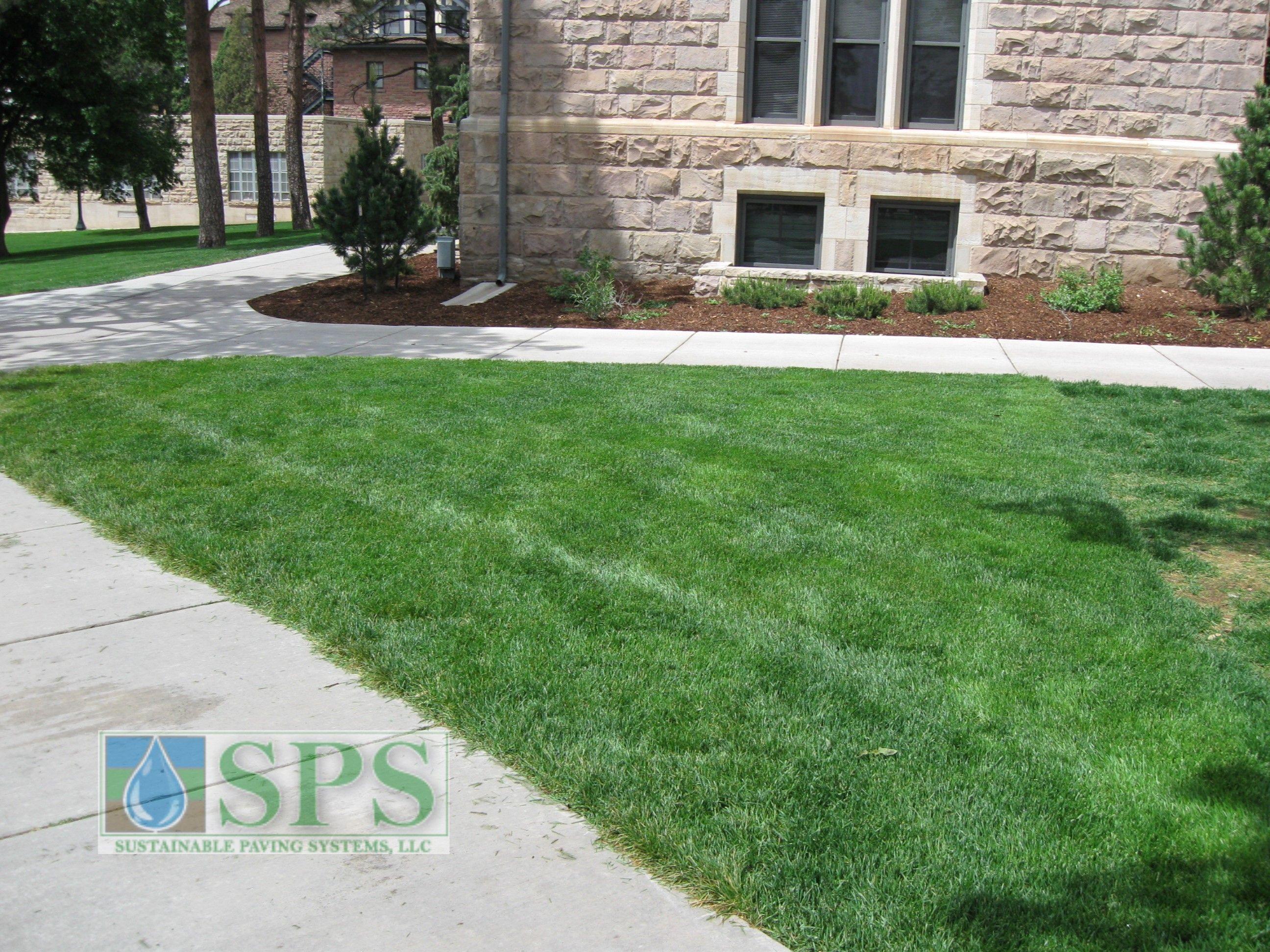 Grasscrete Concealed System At Colorado College_02