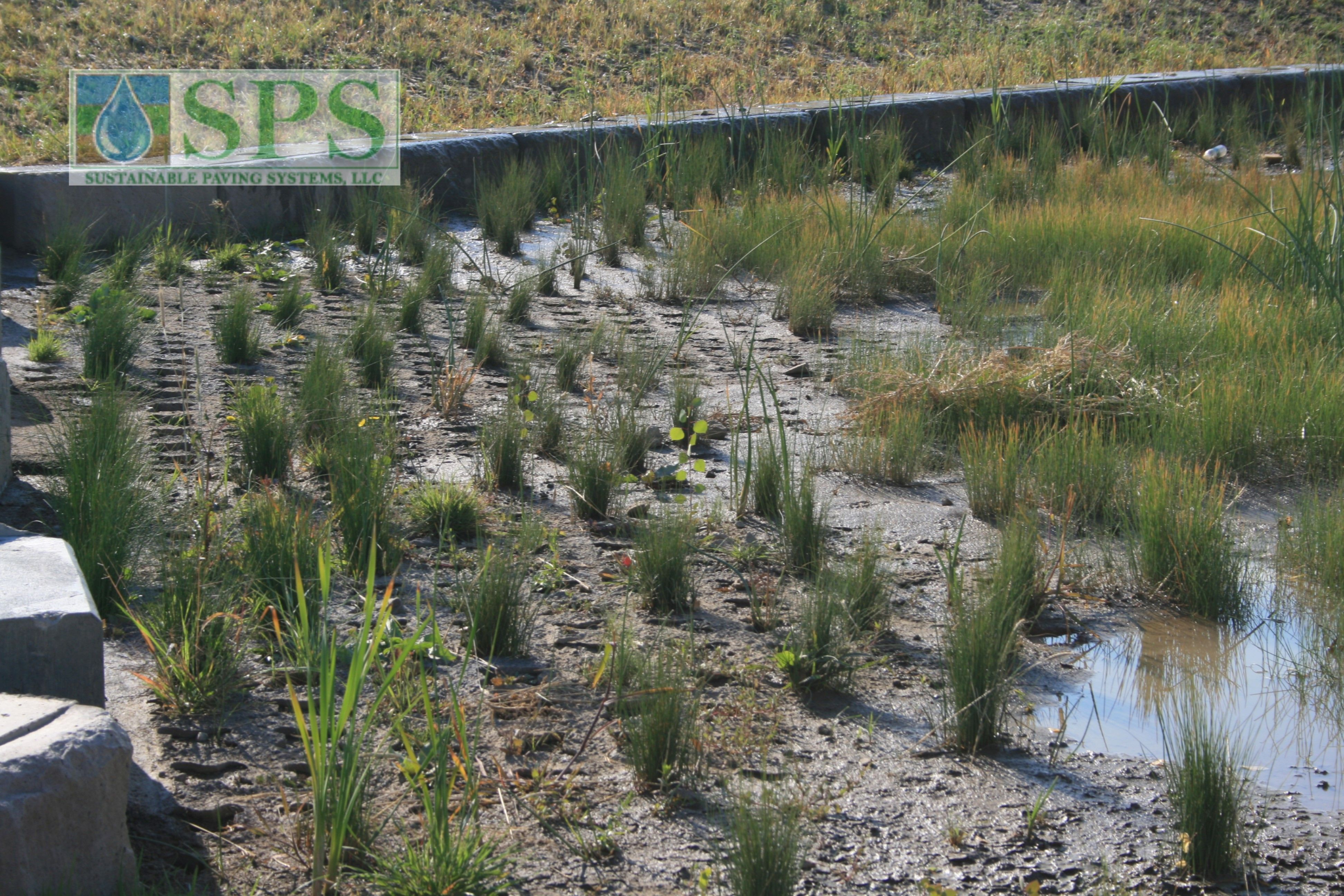 Grasscrete Partially Concealed System At Nrel Detention Pond_03