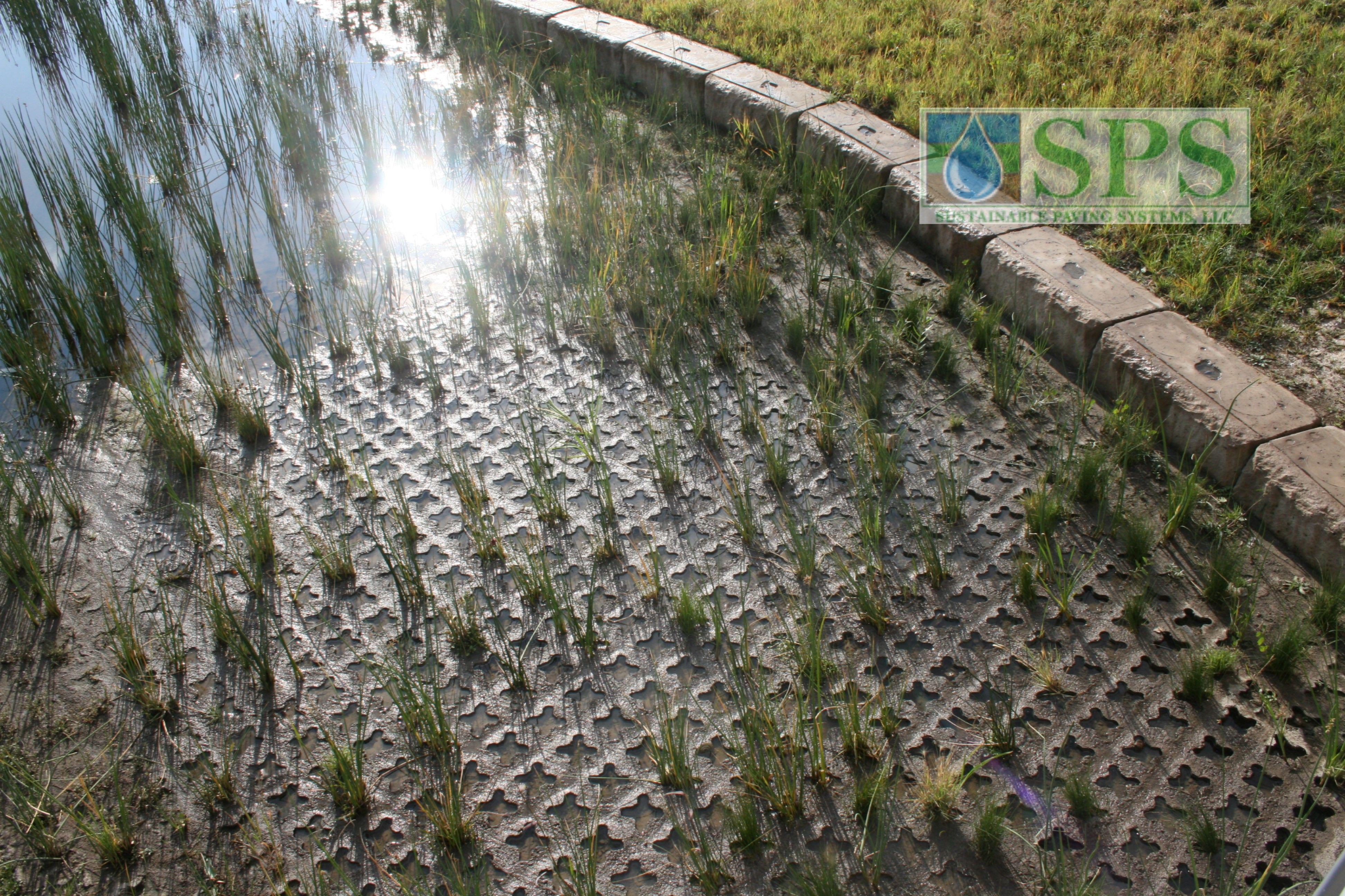 Grasscrete Partially Concealed System At Nrel Detention Pond_07