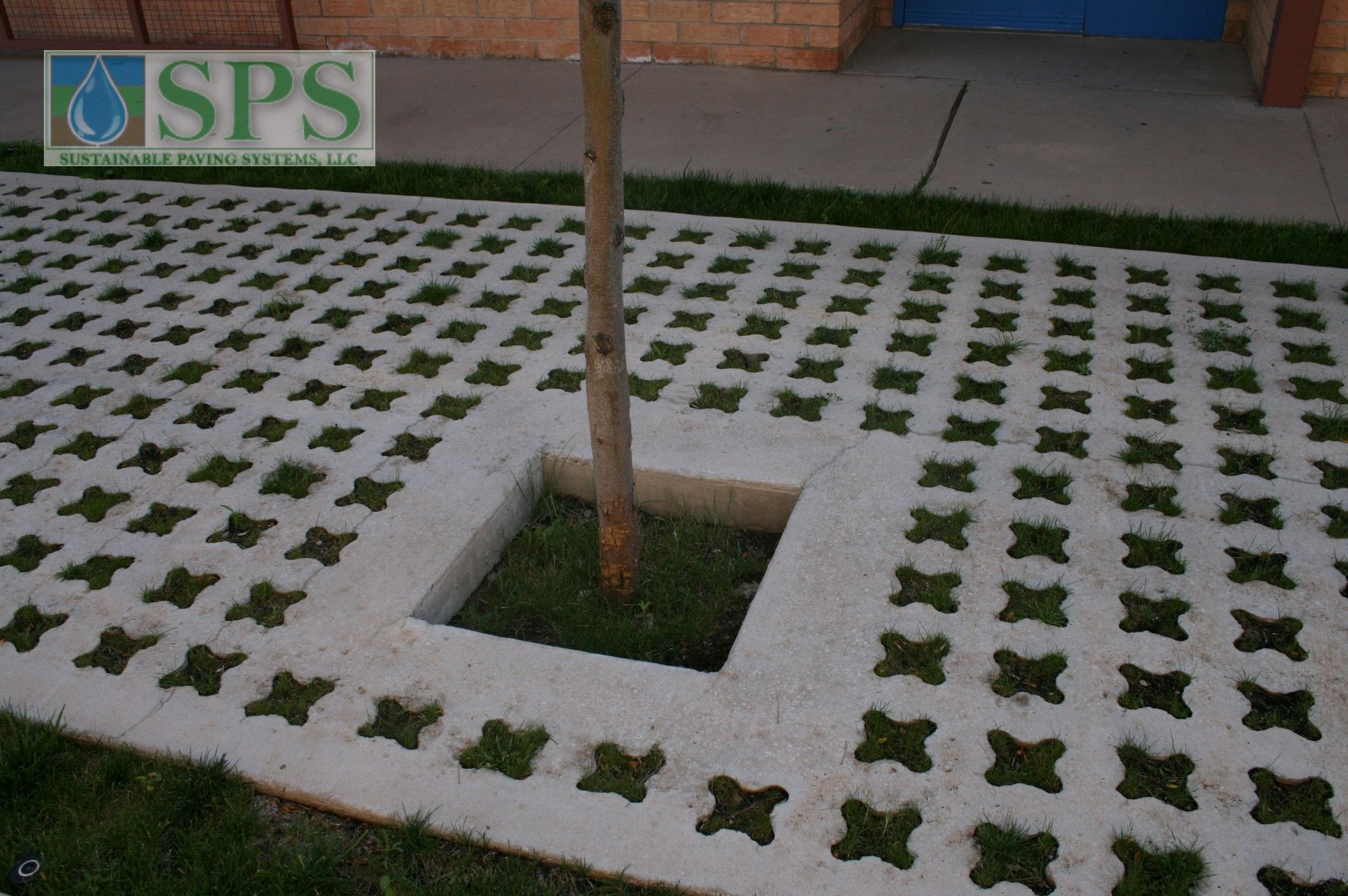 Grasscrete Partially Concealed System At St Mikes School View Of Courtyard Storm Water Management_02