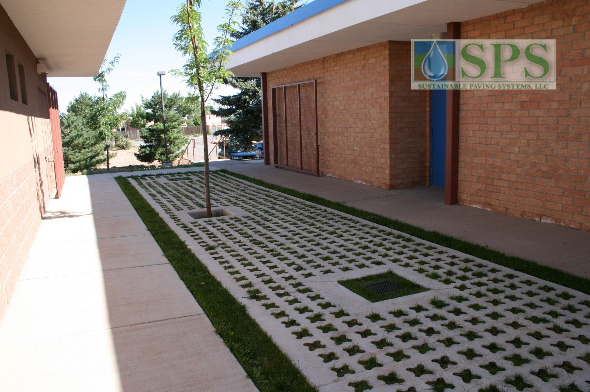 Grasscrete Partially Concealed System At St Mikes School View Of Courtyard Storm Water Management_03