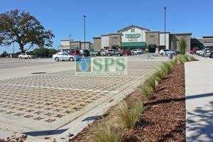 This Grasscrete Stone Filled Pervious Concrete parking lot at Sprouts Farmers Market in Denton TX has delineated lines for spaces, can control storm water drainage, eliminates the heat island effect of typical parking lots, and was installed by Texas Bomanite.