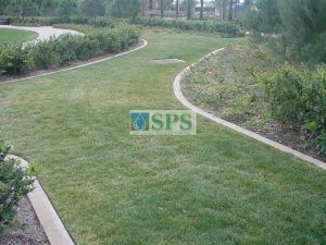 General landscaping also employs Fully Concealed Grasscrete at Woodbury Community Development Invine, CA, for Water Management and Vehicle Access.
